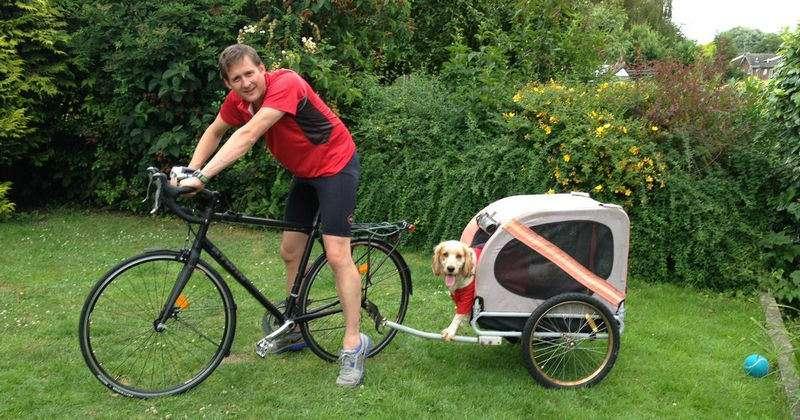 best bike dog trailer